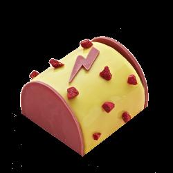 Bûche Mango